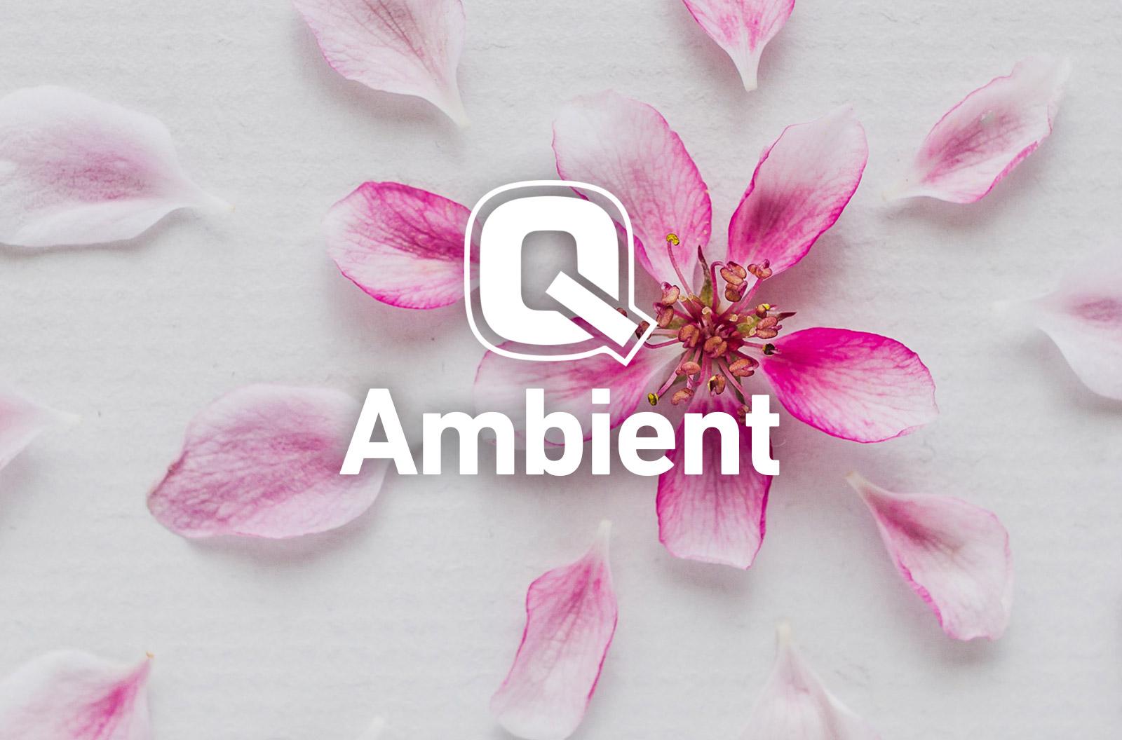Quimidex Ambient